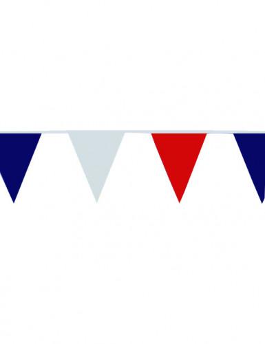 Guirnalda de banderines para aficionado francés