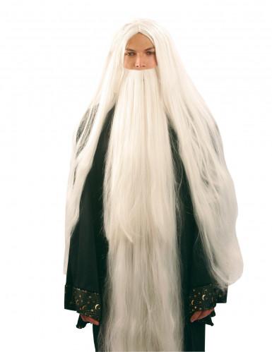 Peluca y barba de mago para hombre