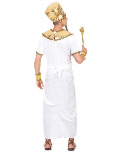 Disfraz de rey egipcio para hombre-2
