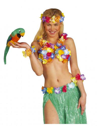 Loro hawaiano-1