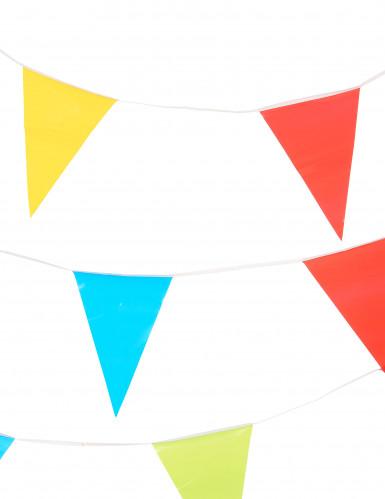 Guirnalda de banderines de varios colores 10 metros.-1