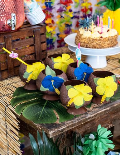Copa hawaiana en forma de coco-1