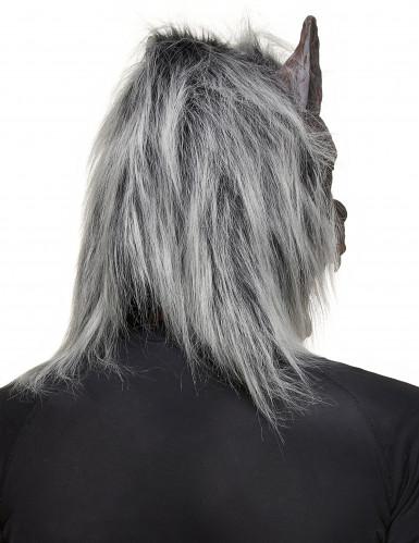 Máscara de hombre lobo para adulto ideal para Halloween-1