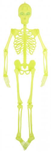 Esqueleto articulado para decorar, ideal para Halloween