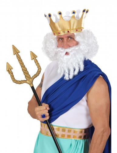Peluca blanca dios olímpico