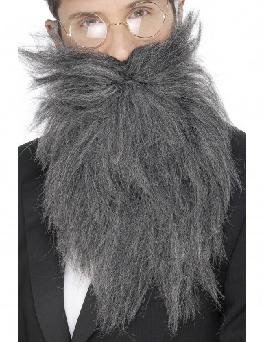 Barba larga gris para hombre