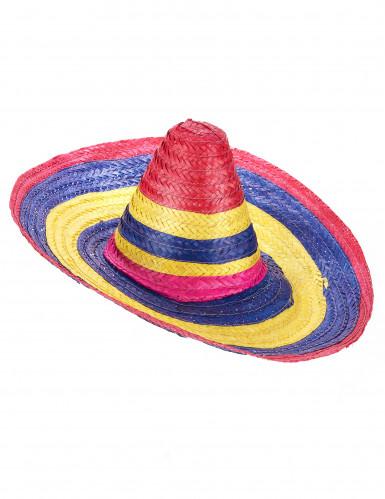 Sombrero multicolor para adulto