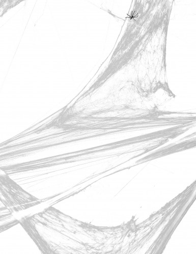 Decoración telaraña blanca con arañas Halloween-1
