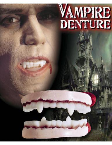 Dentadura vampiro adulto Halloween