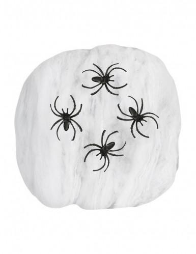 Telaraña blanca Halloween-1