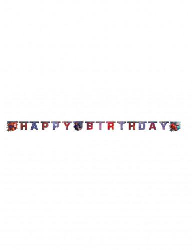 Guirnalda Happy Birthday Big Hero 6™