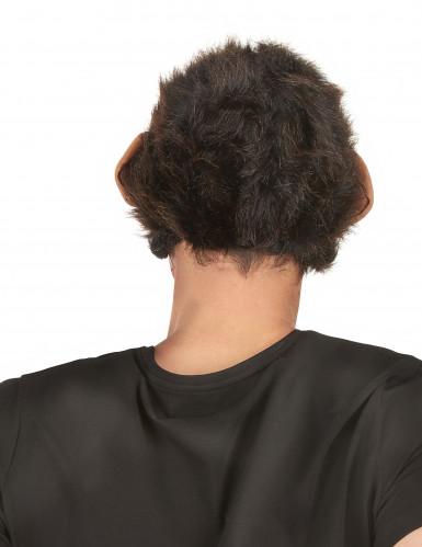 Máscara deluxe látex chimpancé articulada adulto-2