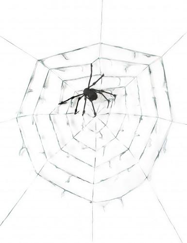 Telaraña gigante con araña 2,9 m Halloween