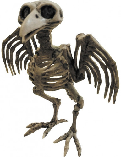 Esqueleto cuervo Halloween