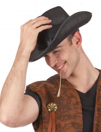 Sombrero cowboy adulto-1