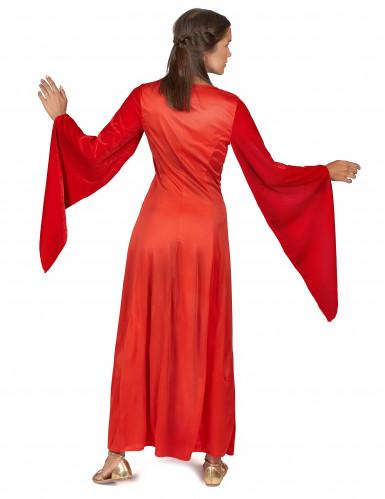 Disfraz mujer medieval-2