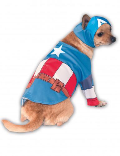 Disfraz perro Capitán América™