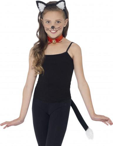 Kit de gato negro adulto