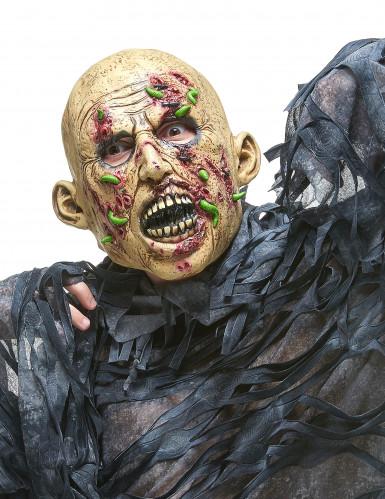 Máscara zombie en descomposición látex adulto