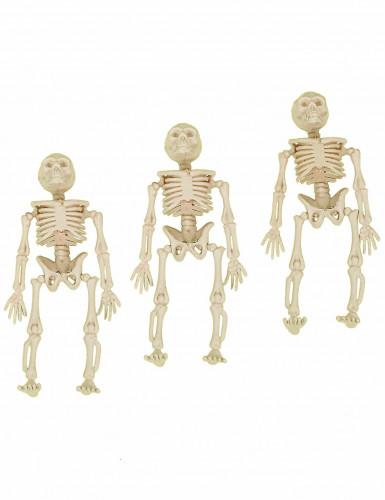 3 Decoraciones esqueletos colgantes