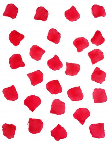 150 Pétalos de flor roja-1