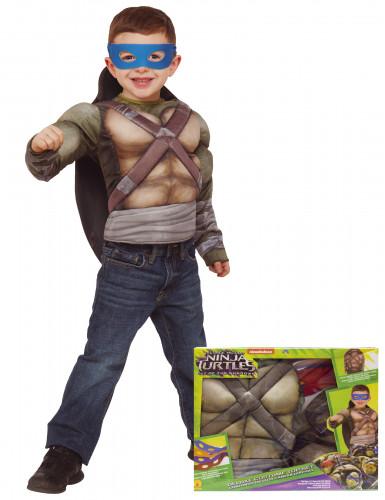 Disfraz Tortugas Ninja™ deluxe musculoso con caparazón caja