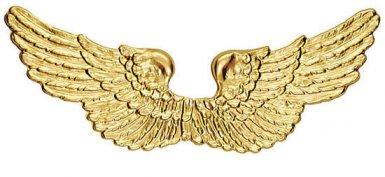 Alas ángel doradas 88 x 25 cm