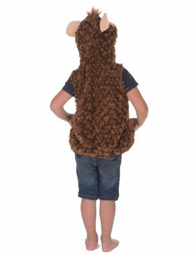 Disfraz mono para niño-3