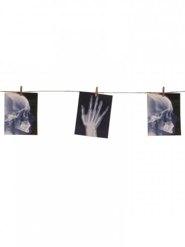 Guirnalda con radiografías 1.60 m