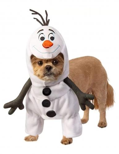 Disfraz olaf Frozen™ perro