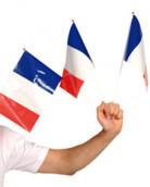 25 Banderas para aficionado francés