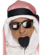 Perilla de príncipe árabe