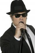 Gafas oficiales de los Blues Brothers para adulto
