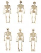 6 Decoraciones esqueletos 15 cm
