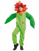 Disfraz flor mariquita niño