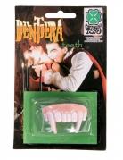 Dentadura caninos vampiro